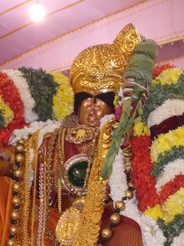 Srivilliputtur_Thiruvaadipooram_day3_1