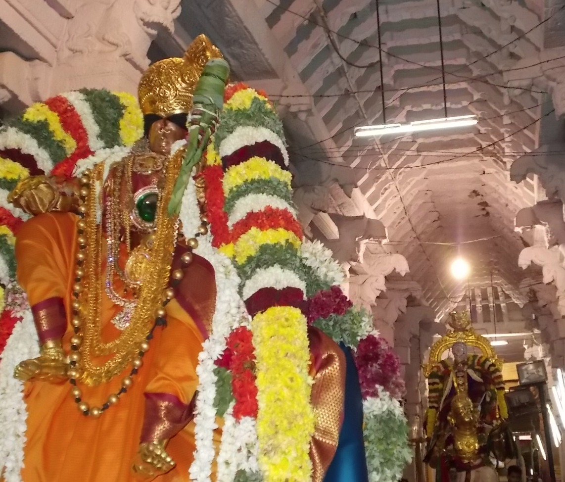 Srivilliputtur_Thiruvaadipooram_day3_17