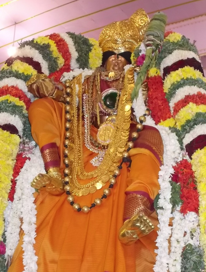 Srivilliputtur_Thiruvaadipooram_day3_4