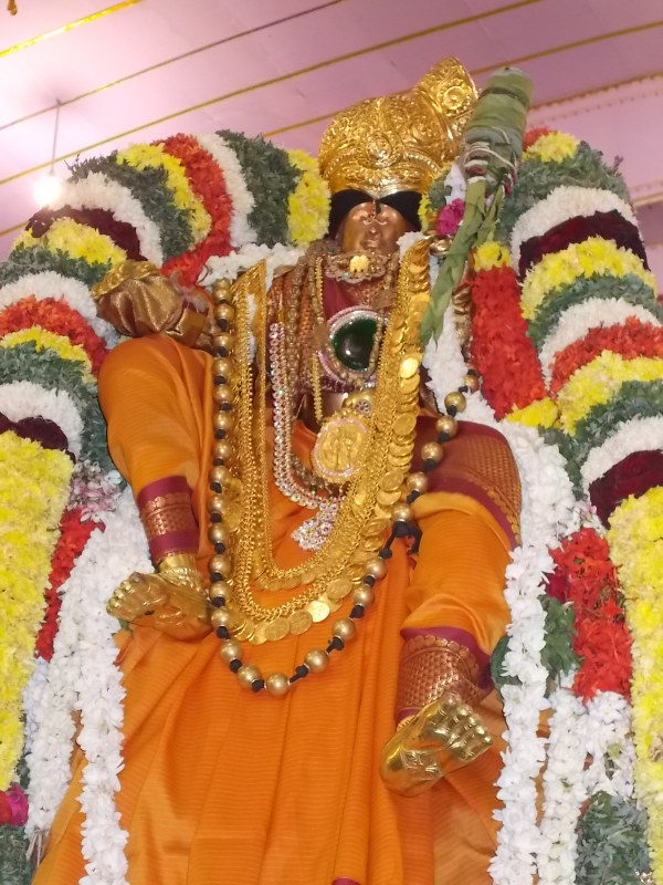 Srivilliputtur_Thiruvaadipooram_day3_5