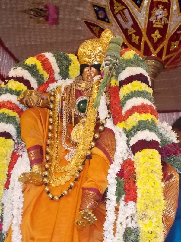 Srivilliputtur_Thiruvaadipooram_day3_6