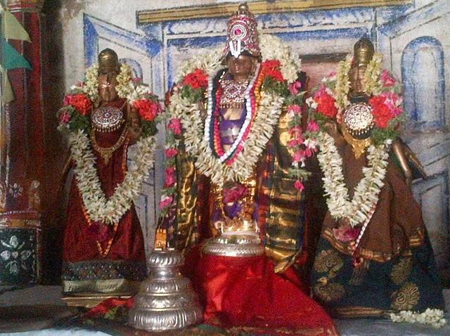 Thirumeyyam Pavithrothsavam 2013 14