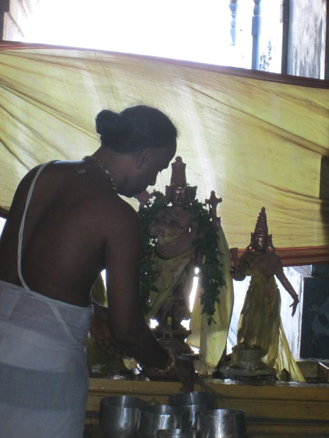 Thiruneermalai_Pavitrotsavam_04