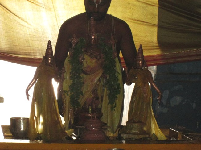 Thiruneermalai_Pavitrotsavam_12