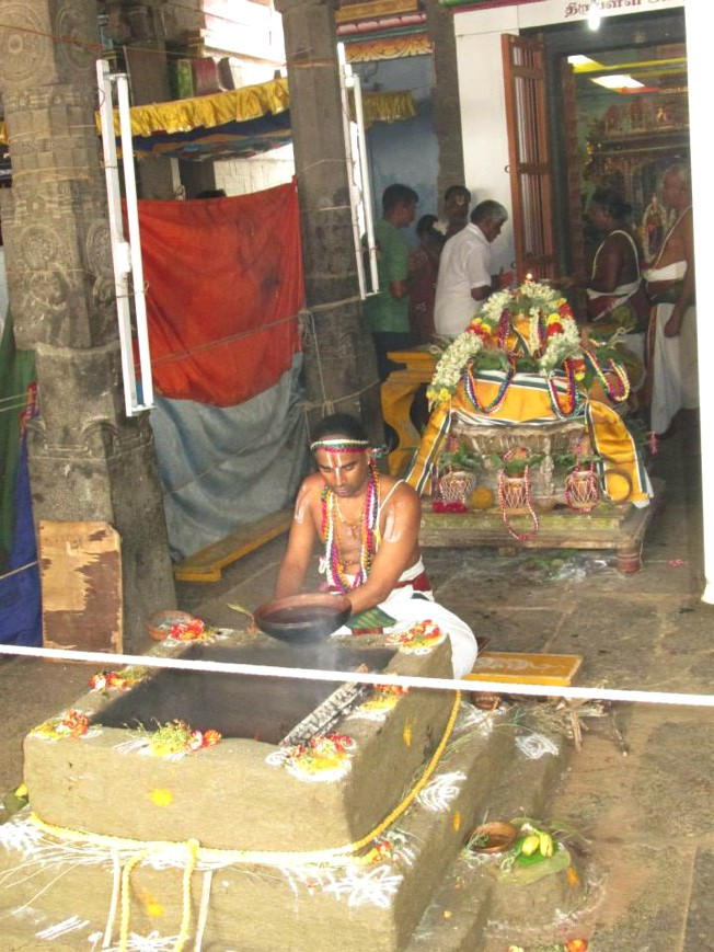 Thiruneermalai_Pavitrotsavam_19