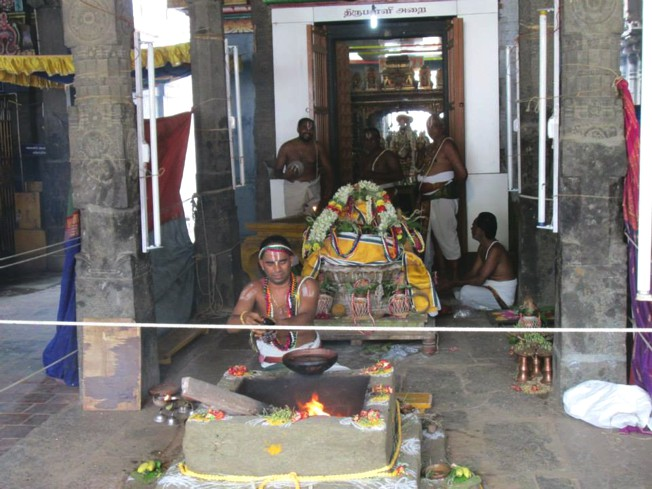 Thiruneermalai_Pavitrotsavam_28