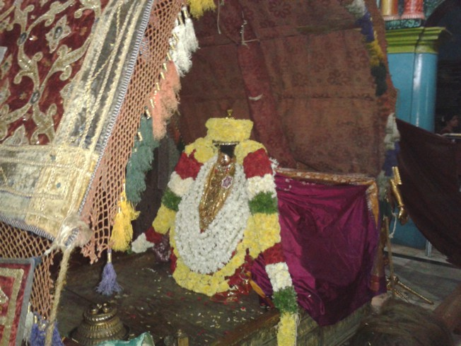 Thiruvahindrapuram_Swami Desikan_Day1_Evening_04