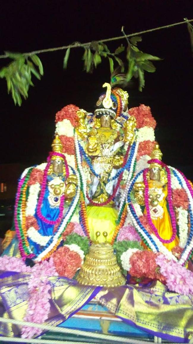 Pavithrotsavam at Thandarai Sri Lakshmi Narayana Perumal Temple 2013 -12