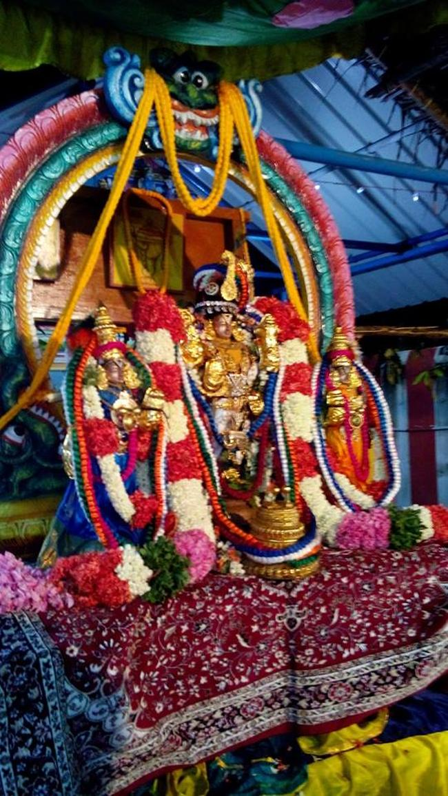Pavithrotsavam at Thandarai Sri Lakshmi Narayana Perumal Temple 2013 -14