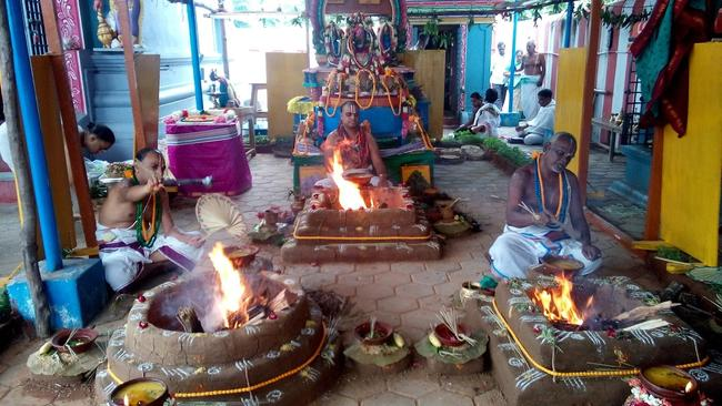 Pavithrotsavam at Thandarai Sri Lakshmi Narayana Perumal Temple 2013 -16