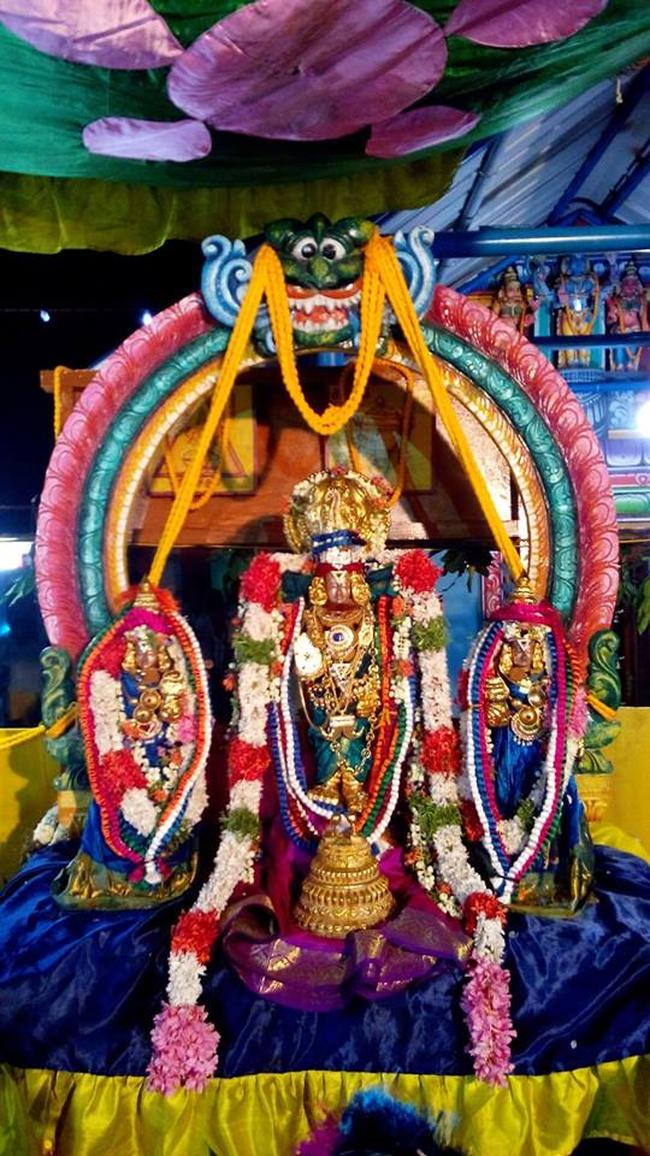 Pavithrotsavam at Thandarai Sri Lakshmi Narayana Perumal Temple 2013 -19