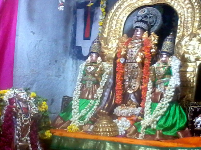 Thirumangai Azhwar janma thirunakshatram at thiruvellukkai 2013-08
