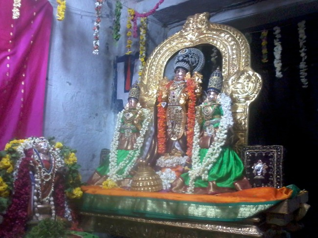 Thirumangai Azhwar janma thirunakshatram at thiruvellukkai 2013-11