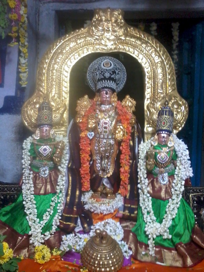 Thirumangai Azhwar janma thirunakshatram at thiruvellukkai 2013-13