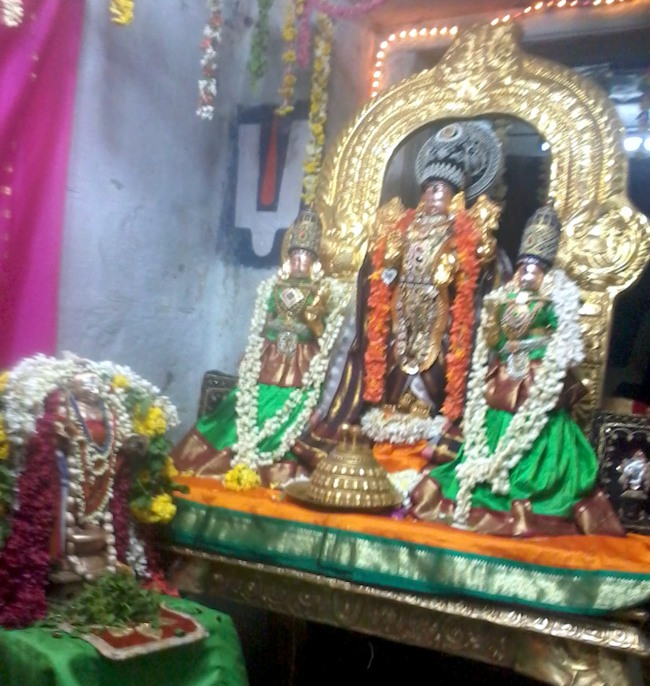 Thirumangai Azhwar janma thirunakshatram at thiruvellukkai 2013-18