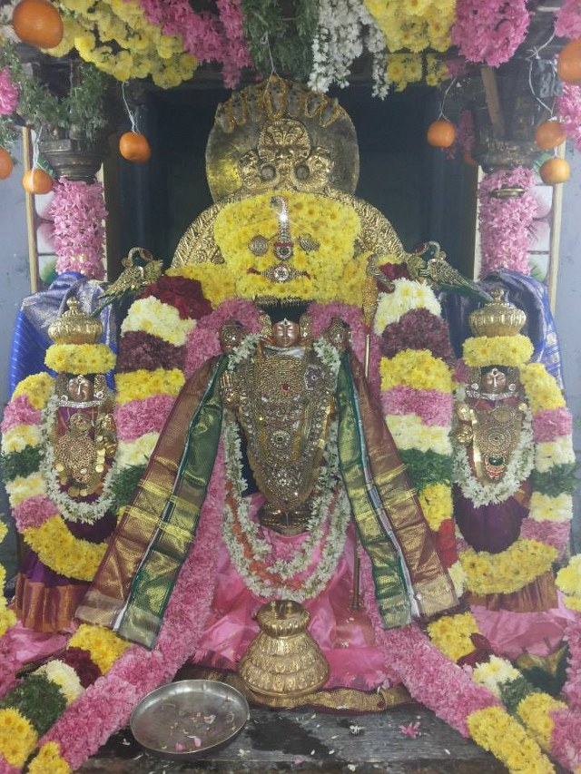 Nammazhwar Moksham at Thiruvahindrapuram Devanathan  Temple 2014 set -01_640x853