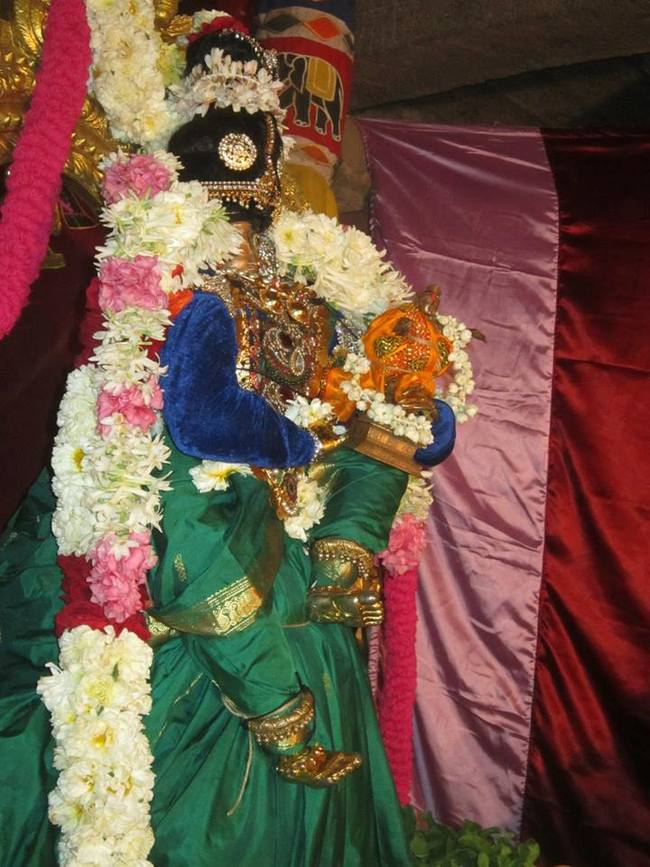 Saidapet Pagal pathu day 7 2014-04