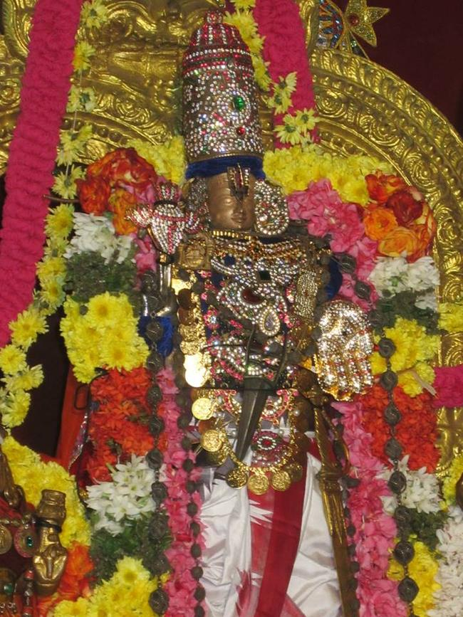 Saidapet  pagal pathu utsavam day5 2014-07