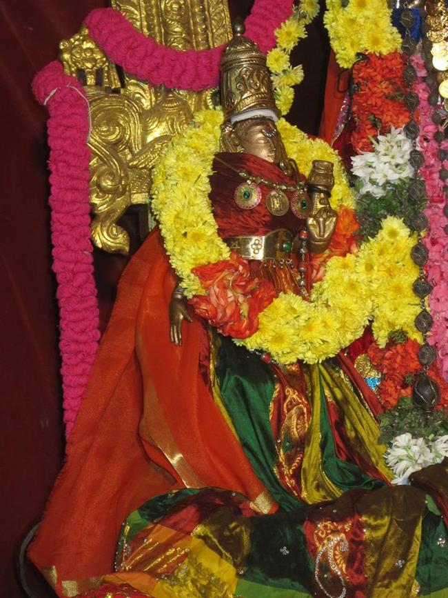 Saidapet  pagal pathu utsavam day5 2014-15