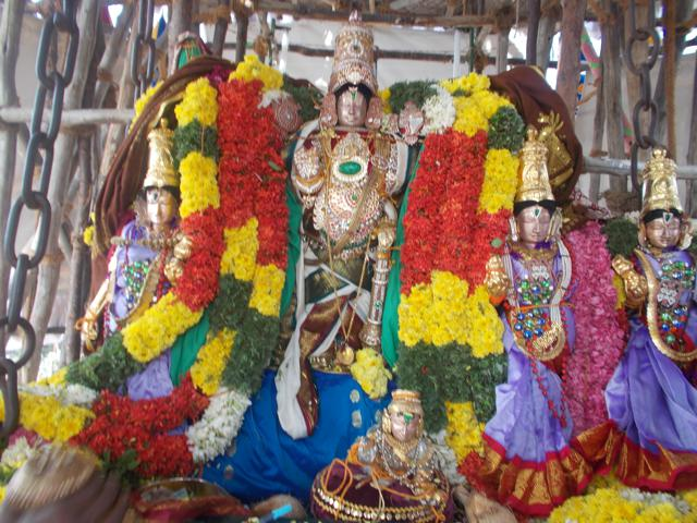 Thirucherai_Brahmotsavam_Thiurther-62
