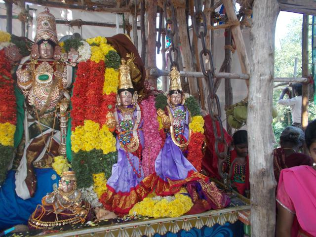 Thirucherai_Brahmotsavam_Thiurther-63