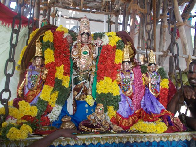 Thirucherai_Brahmotsavam_Thiurther-70