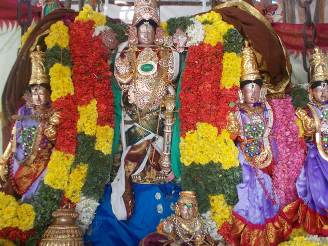 Thirucherai_Brahmotsavam_Thiurther-79