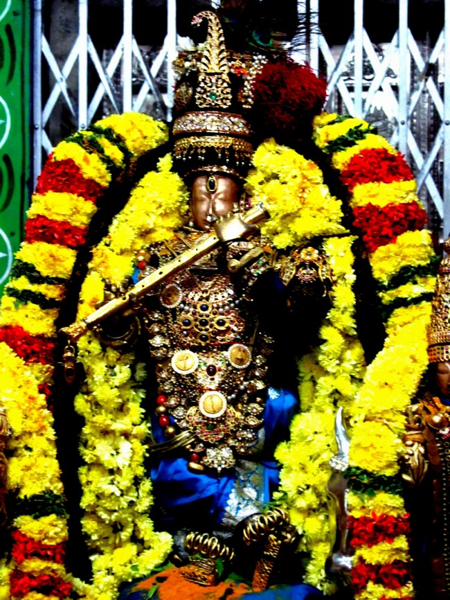 Thiruvallur Thai Brahmotsavam day 6 2014--29
