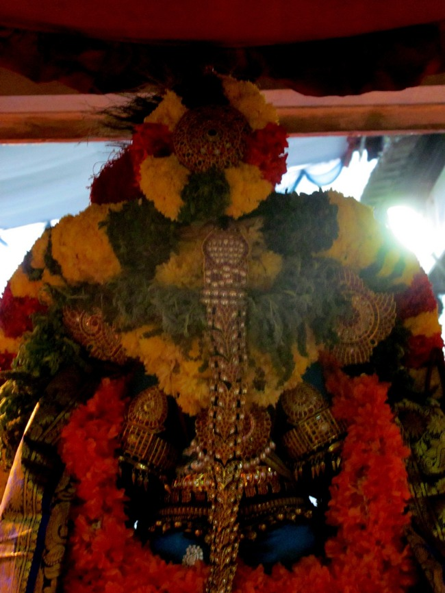 Thiruvallur Thai Brahmotsavam day 6 2014--32