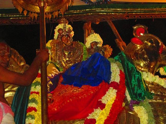 120th Thirunangur 11 Garuda Sevai  2014--0065