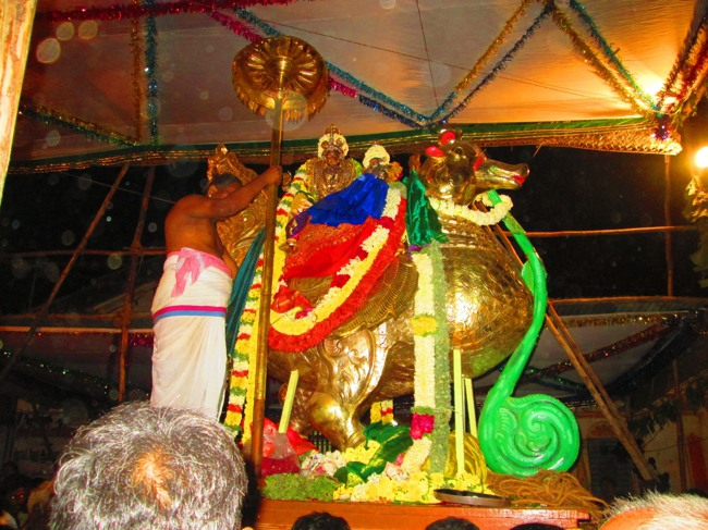 120th Thirunangur 11 Garuda Sevai  2014--0066