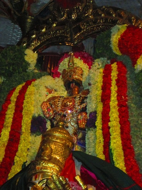 120th Thirunangur 11 Garuda Sevai  2014--0070