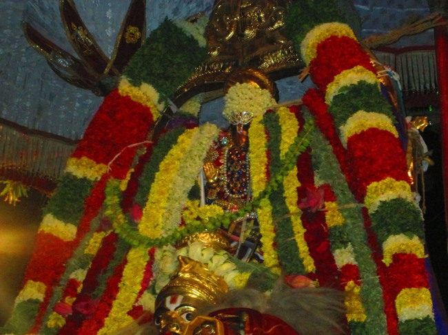 120th Thirunangur 11 Garuda Sevai  2014--0083