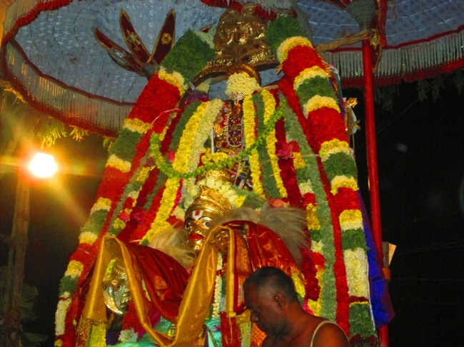 120th Thirunangur 11 Garuda Sevai  2014--0084