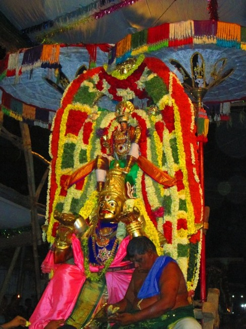 120th Thirunangur 11 Garuda Sevai  2014--0088