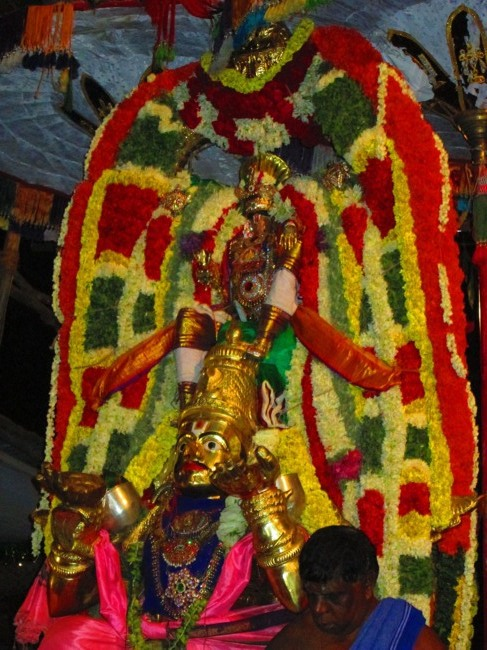 120th Thirunangur 11 Garuda Sevai  2014--0091