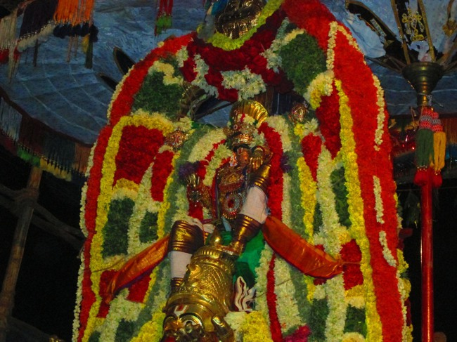 120th Thirunangur 11 Garuda Sevai  2014--0092
