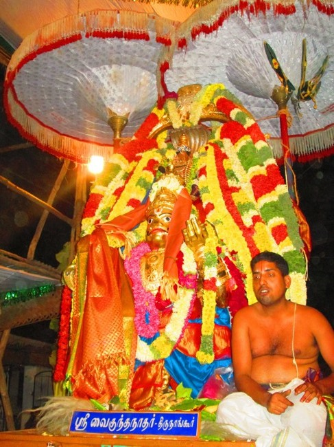 120th Thirunangur 11 Garuda Sevai  2014--0107