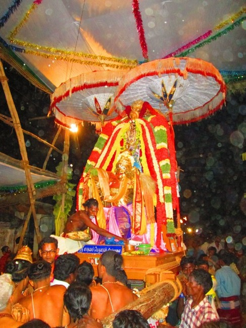 120th Thirunangur 11 Garuda Sevai  2014--0110