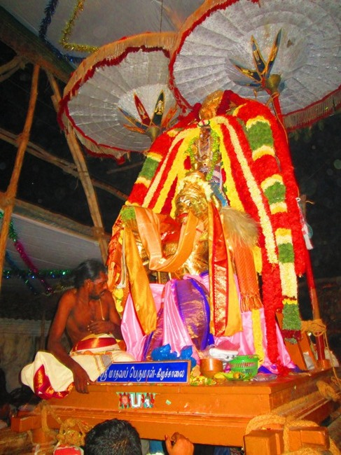 120th Thirunangur 11 Garuda Sevai  2014--0113