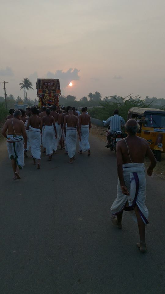 Masi magam utsavam at THiruvahindrapuram  2014 -1