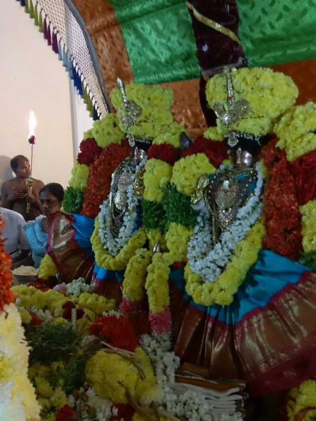 Masi magam utsavam at THiruvahindrapuram  2014 -2