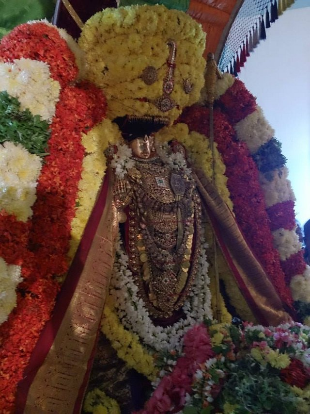 Masi magam utsavam at THiruvahindrapuram  2014 -5