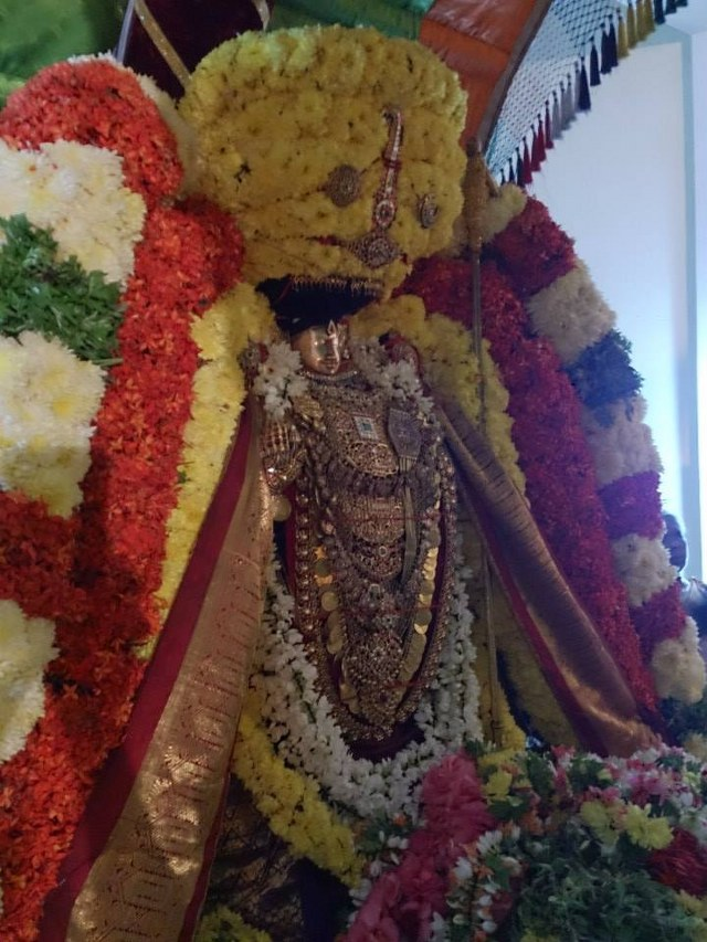 Masi magam utsavam at THiruvahindrapuram  2014 -9