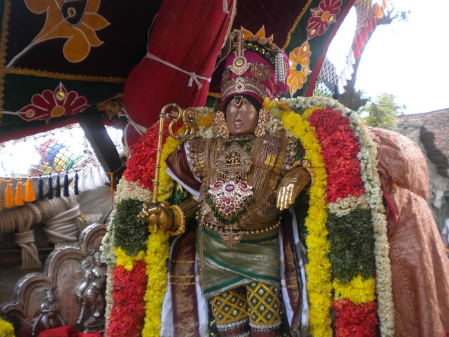 Mannargudi Rajagopalan Day 6 Utsavam Morning  2014 -7