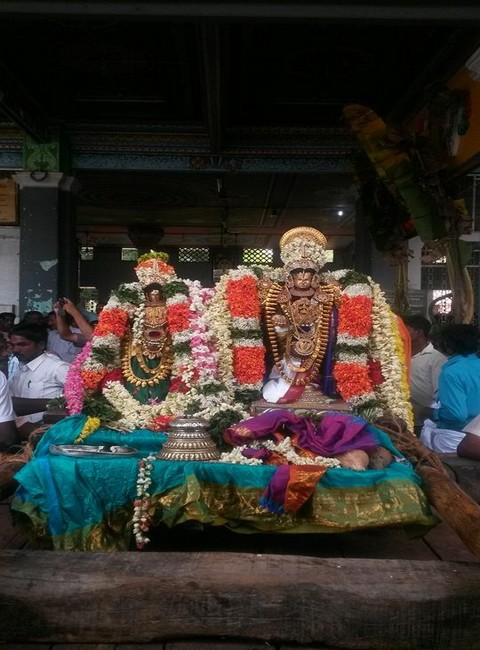 Sri Oppilliappan Brahmothsavam Thiruther1