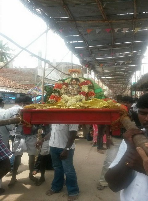 Sri Oppilliappan Brahmothsavam Thiruther12