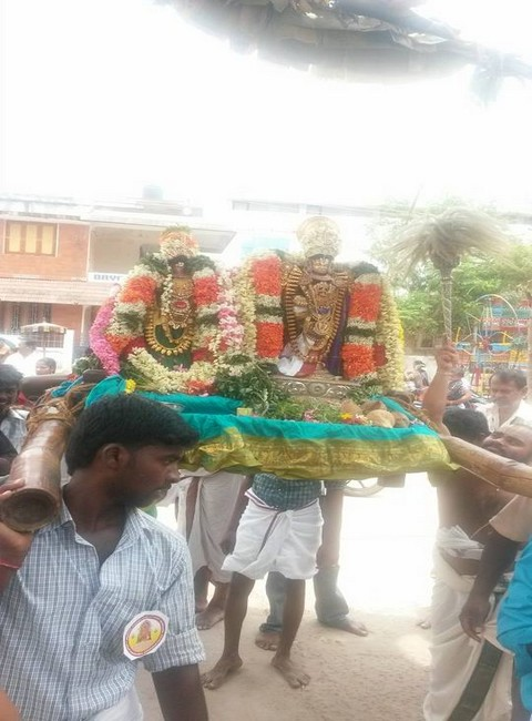 Sri Oppilliappan Brahmothsavam Thiruther17