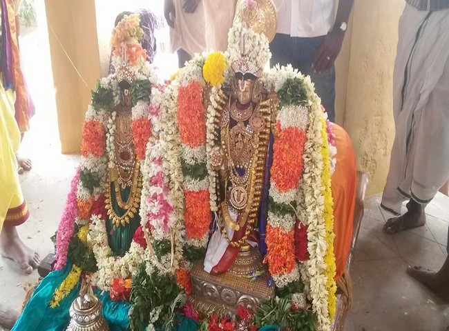 Sri Oppilliappan Brahmothsavam Thiruther19