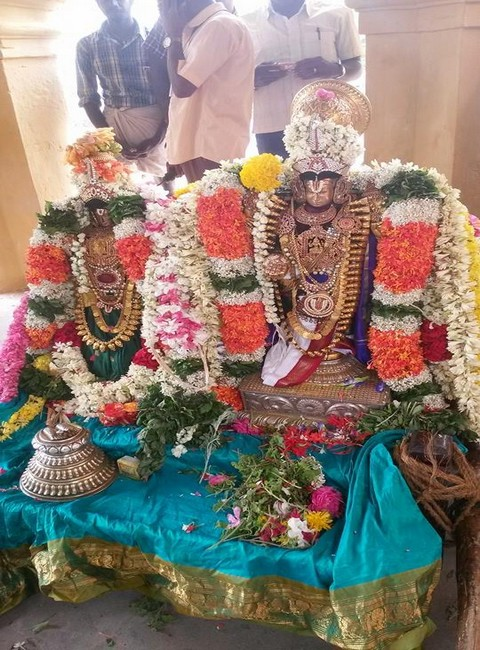 Sri Oppilliappan Brahmothsavam Thiruther2